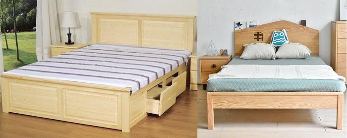 Nên chọn giường gỗ Sồi Trắng hay Sồi Đỏ