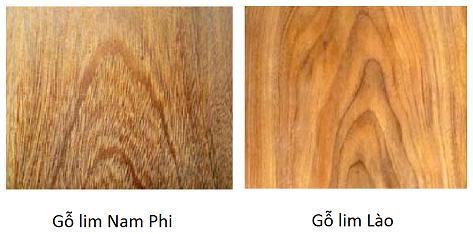 Phân biệt gỗ lim Nam Phi và gỗ lim Lào