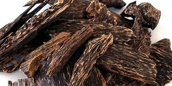 Các loại gỗ quý tại Việt Nam và trên thế giới