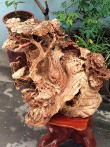 【Tư vấn】Nu gỗ là gì? Và nu gỗ gì đẹp nhất trên thị trường gỗ hiện nay?